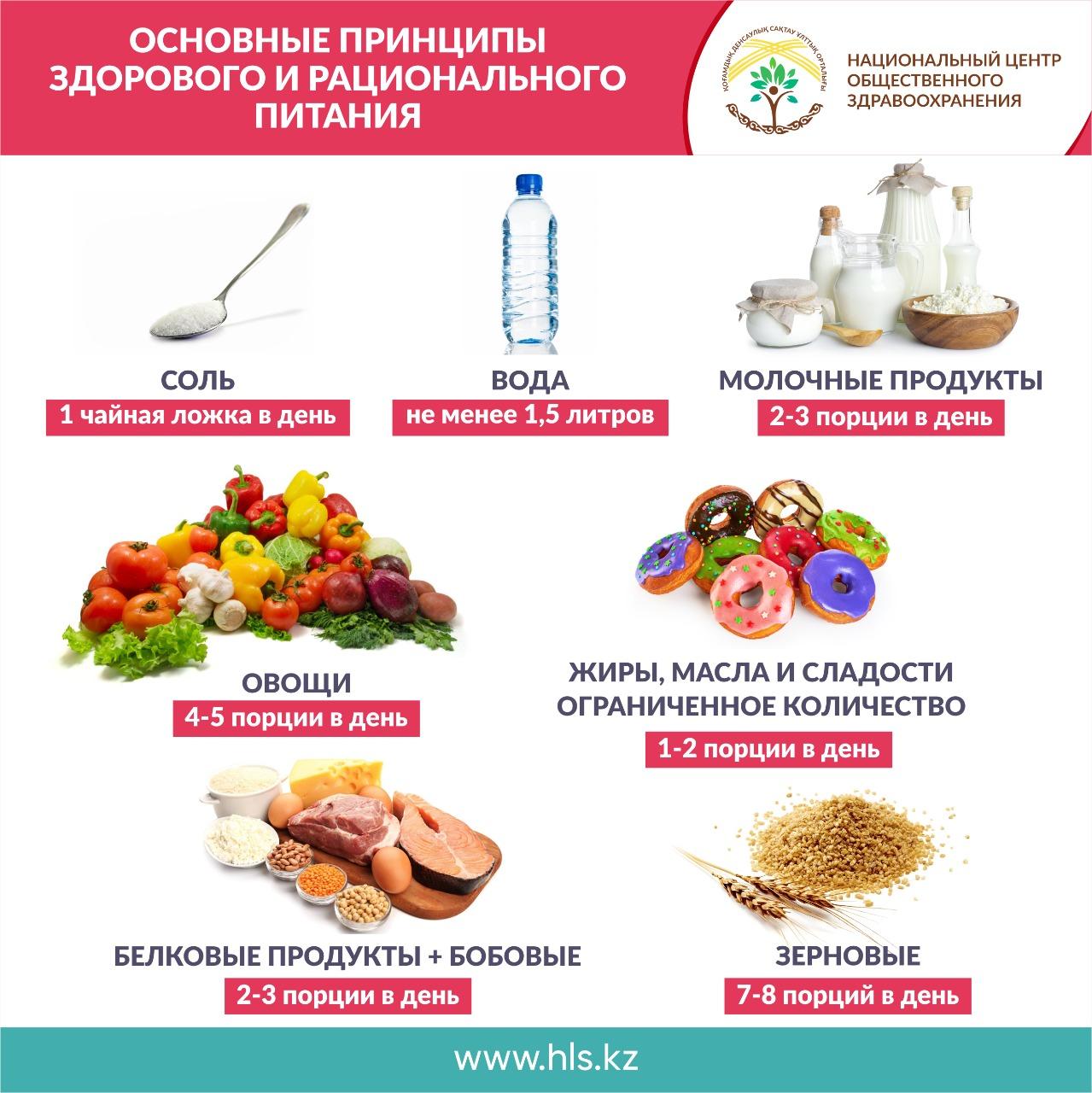 Основные принципы здорового и рационального питания